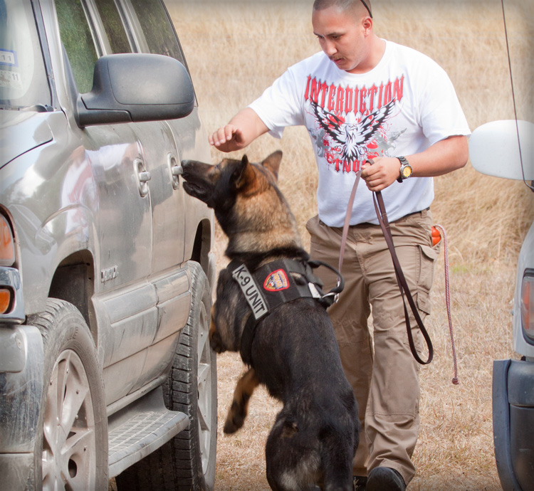 K-9 Narcotics Detection Dog searching for drugs