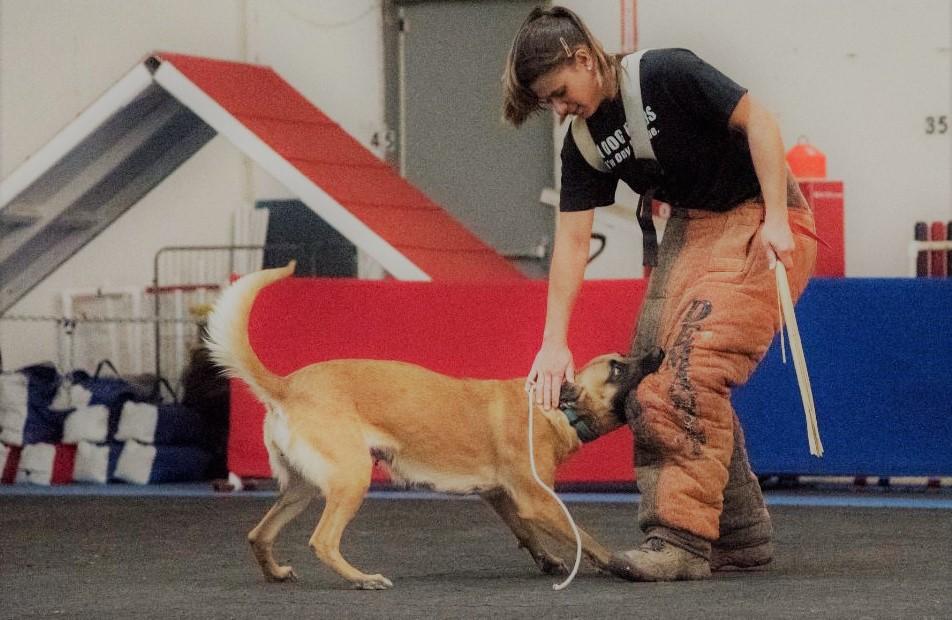 K9 Dog Trainer Yasmin Bowersox from Worldwide Canine Inc.